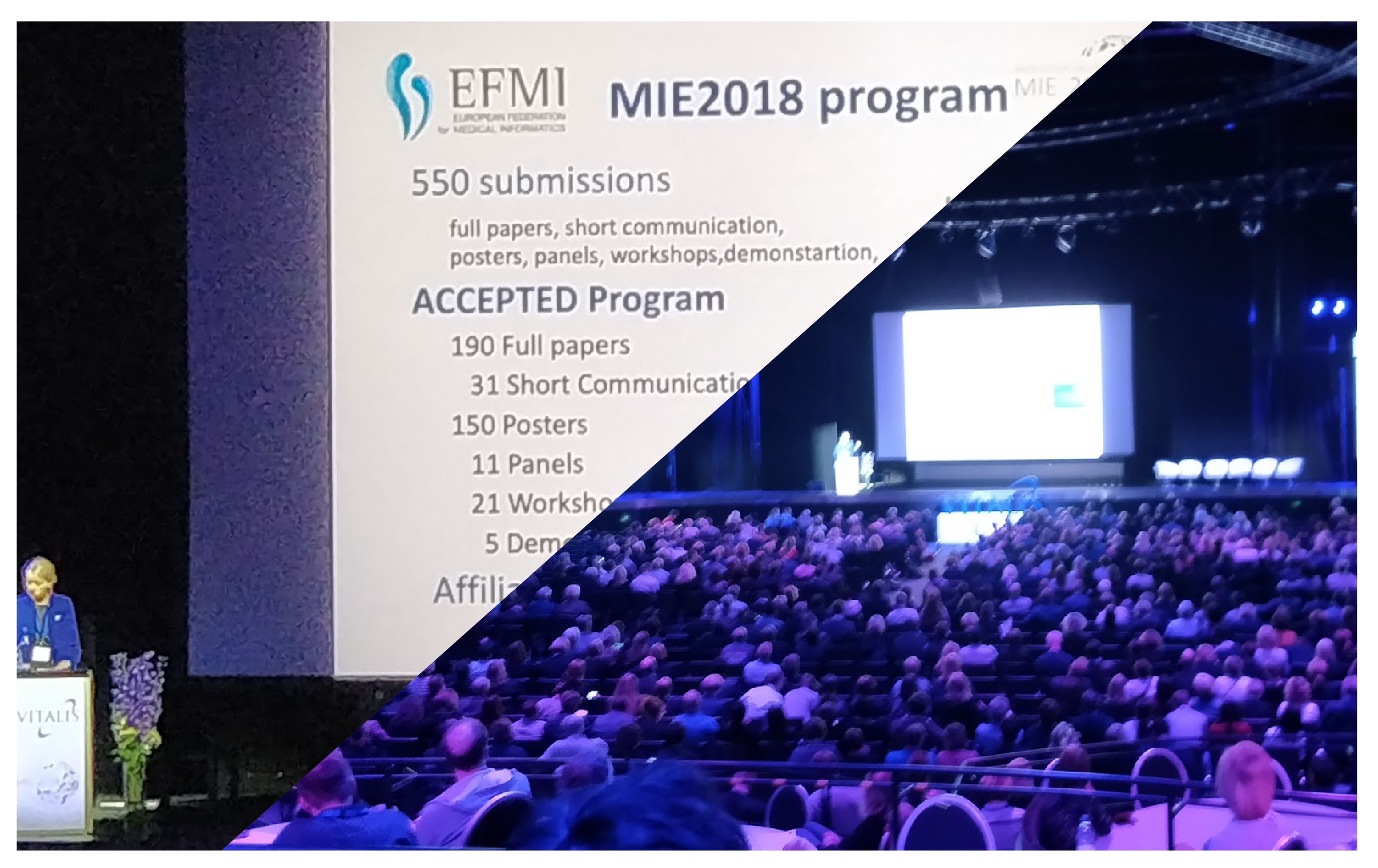 Collaborators were invited to integrate EFMI-European Federation for Medical Informatics SSE